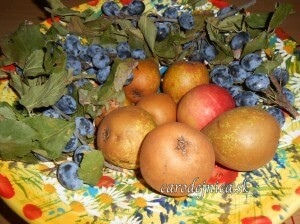 Jesenné plody v mise slobody