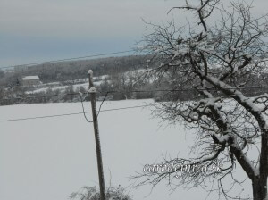 Januárová snehová kalamita