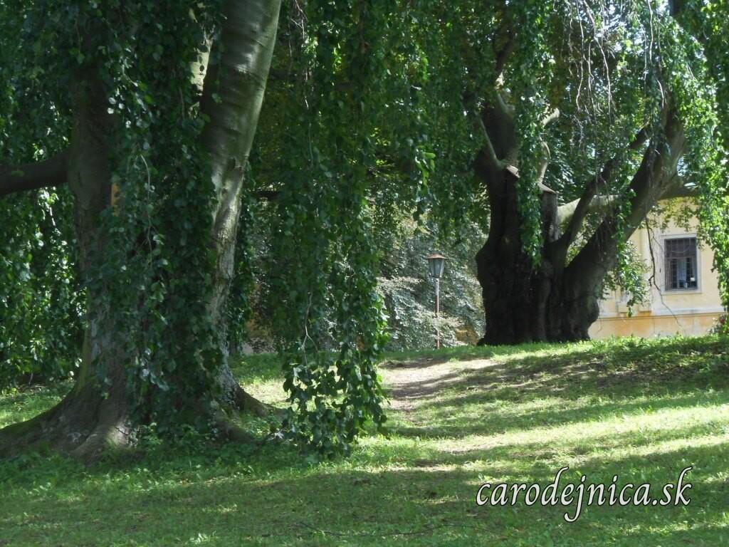 Krása zámockého parku v Střílkach