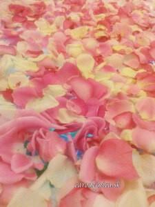 Ružové lupene lásky