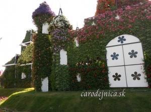 Alica v Miracle garden