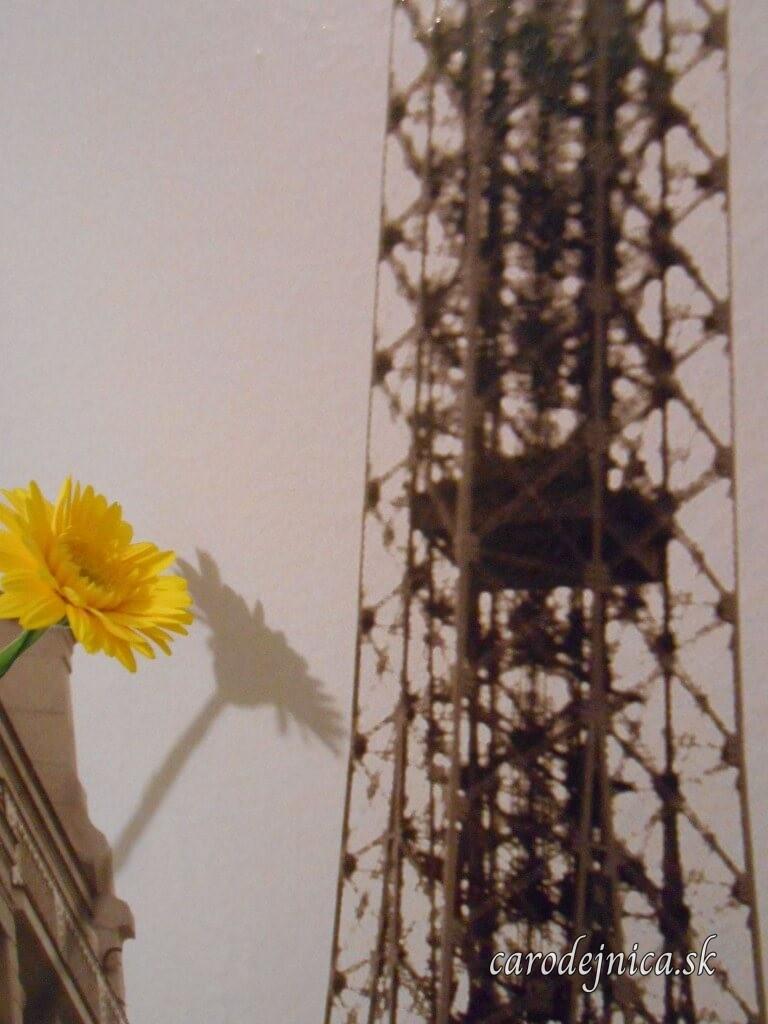 Kvet žltej gerbery a jej tieň na plagáte s Eiffelovou vežou