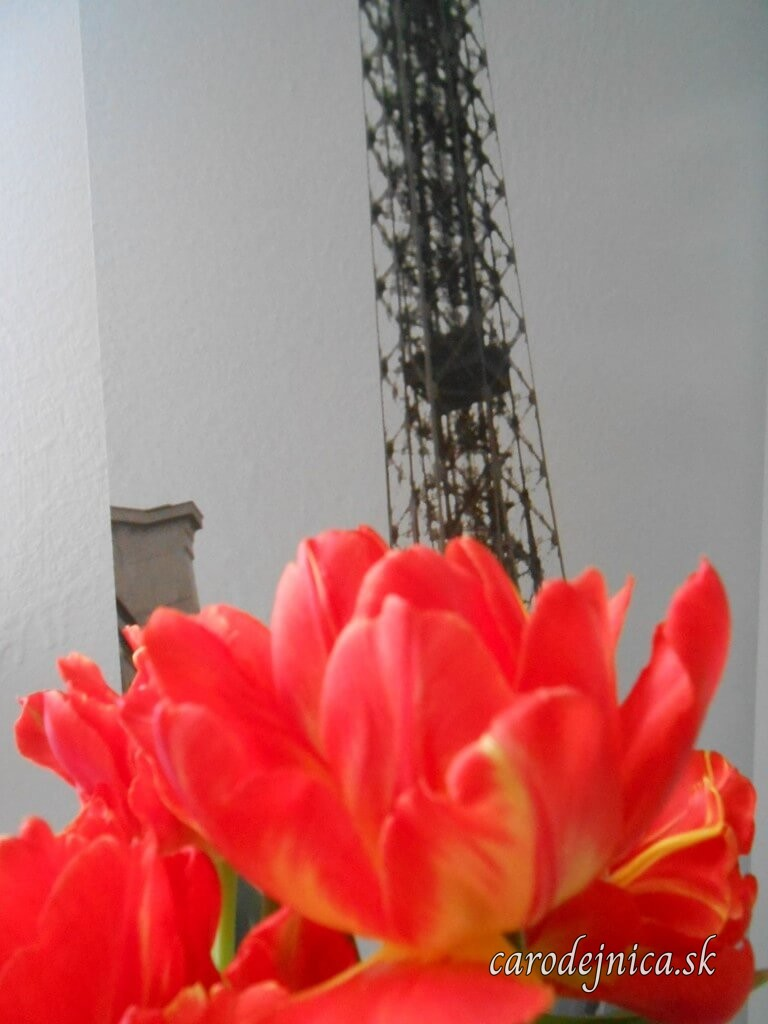 Rozkvitnuté červené tulipány pred plagátom s Eiffelovou vežou