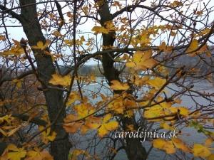 November v Prahe