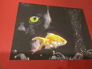 obrázok čiernej mačky a zlatej rybky v červenom ráme