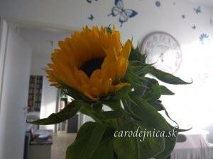 kvet slnečnice a v pozadí hodiny na stene s modrými motýľmi