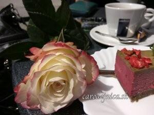 ruža na stole veľa zákusku a kávovej šálky