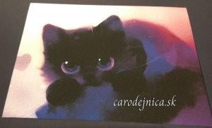 malé čierne mačiatko